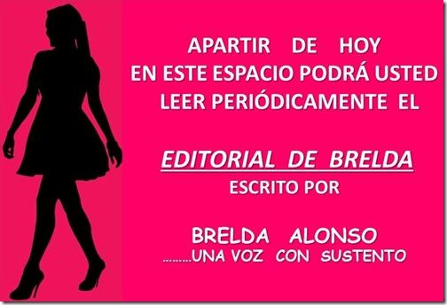 IDENTIDAD DE LA COLUMNA EDITORIAL DE BRENDA
